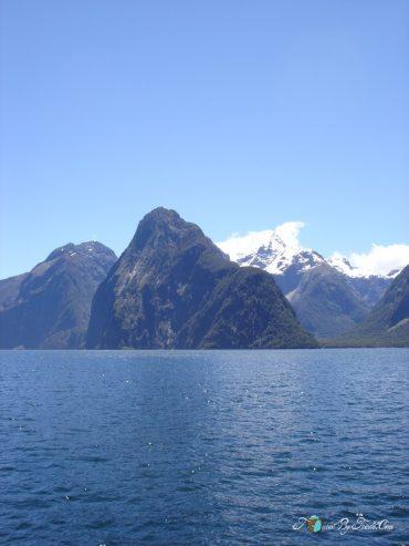 New Zealand DSC